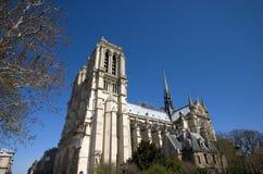 Notre Dame in Parijs, Frankrijk Stock Fotografie