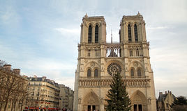 Notre-Dame of Paris. The cathedral of Notre-Dame of Paris under cold winter sky. A Christmas tree in the middle of building Royalty Free Stock Photo