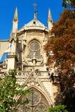 Notre Dame, Paris Fotos de Stock