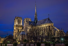 Notre Dame Paris en la hora azul Foto de archivo