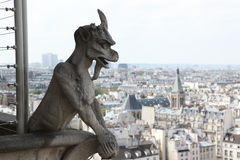 Notre Dame of Paris, famous of all Chimeras Stock Photos