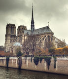 Notre Dame Paris, France Royalty Free Stock Image