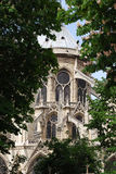 Notre Dame in Paris, France. The back of Notre Dame, framed by trees and foliage royalty free stock photo