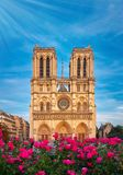 Notre-Dame Cathedral in Paris France with Roses Stock Images