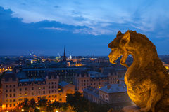 Notre Dame. PARIS - JULY 15,2014: Gargoyle on the roof of Notre Dame, Paris Cathedral. Night view from the roof top of Notre Dame de Pari. July 15,Paris, France Royalty Free Stock Photography