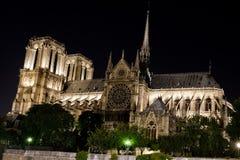 Notre Dame paris nattsikt Arkivfoto