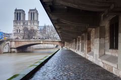 Notre-Dame from Paris with Sena. In a cloudy day, France royalty free stock photo