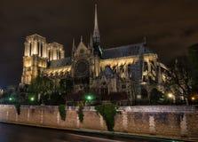 Notre Dame Paris Side View Imagen de archivo