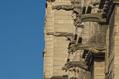 Notre dame paris statues and gargoyles Royalty Free Stock Photography