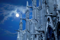 Notre Dame of Paris under moonlight Royalty Free Stock Images