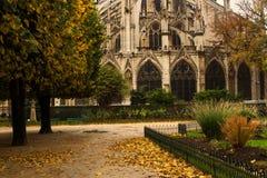Notre Dame park autumn. Landmark and touristic spot: little park near Gothic Notre Dame de Paris Cathedral on the the Seine river in Paris, France, by an autumn Stock Photography