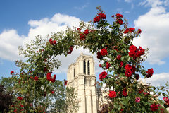 Notre Dame with Roses. Notre Dame cathedral in Paris seen from a rose garden stock photography