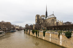 Notre-Dame at the Seine Stock Images