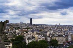 Notre Dame sikt 02 Arkivbild