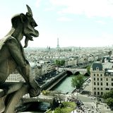 Notre Dame sikt med vattenspillet till Paris och Eiffeltorn Arkivfoto