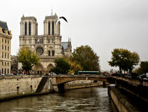 Notre Dame von Paris stockfotos