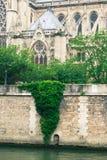 Notre- Damekirche, Ansicht vom Wadenetz lizenzfreie stockbilder