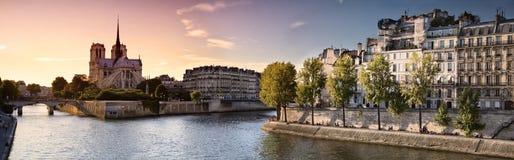 Notre de Dame de Parigi e fiume la Senna Immagini Stock Libere da Diritti