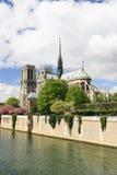 Notre paniusi katedra obrazy royalty free