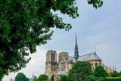 Notre paniusi katedra obramiająca z drzewami Fotografia Royalty Free
