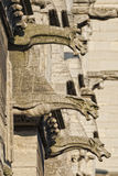 Notre paniusi Paris gargulece i statuy Obraz Stock