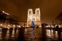 notre paris ночи dame известное стоковые фотографии rf
