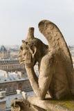 notre paris dame собора Стоковое фото RF