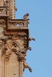 notre paris gargoyles dame Франции Стоковое Изображение RF