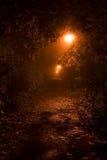 Notte arancione Fotografie Stock Libere da Diritti