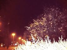 Notte autunnale con pianta e iluminazioni pubbliche illustrazione di stock