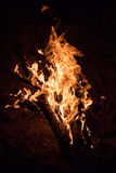 Notte bruciante del falò Immagine Stock Libera da Diritti