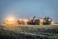 Notte che scarica grano dall'associazione nel campo Fotografie Stock