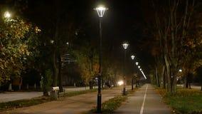 Notte degli alberi del parco della lampada video d archivio