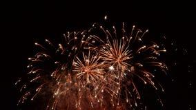 Notte dei fuochi d'artificio immagini stock