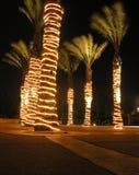 Notte del deserto Fotografia Stock