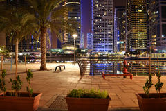 Notte del Dubai immagine stock libera da diritti