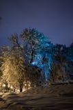 Notte del paesaggio di inverno Fotografie Stock Libere da Diritti