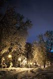 Notte del paesaggio di inverno Immagine Stock Libera da Diritti