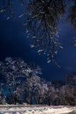 Notte del paesaggio di inverno Fotografia Stock