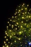 Notte dell'albero di Natale con le luci Immagine Stock