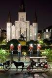Notte della cattedrale di St. Louis fotografie stock libere da diritti