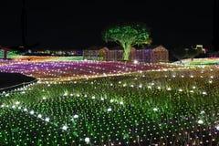 Notte della Corea di festival di illuminazione della luce di Illumia fotografia stock