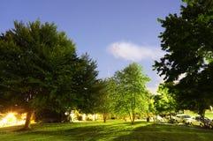 Notte di estate stellata Fotografia Stock Libera da Diritti