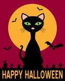 Notte di Halloween con il gatto nero Fotografia Stock Libera da Diritti