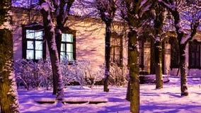 Notte di inverno Fotografia Stock Libera da Diritti
