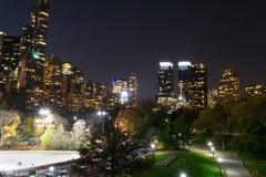 Notte di inverno in Central Park Immagini Stock Libere da Diritti