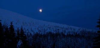 Notte di inverno di luce della luna in montagne Immagine Stock
