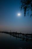 Notte di luce della luna Immagini Stock