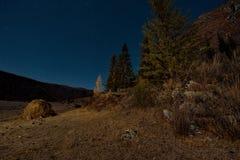 Notte di luce della luna nelle montagne di Altai immagine stock