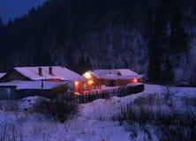 Notte di Snowy Immagini Stock